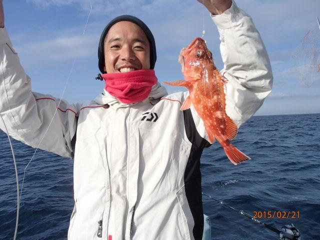ウッカリカサゴも釣れてます!