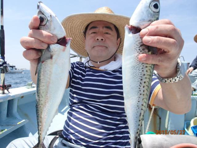 マサバも釣れる!