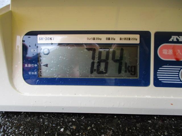 約8キロ!