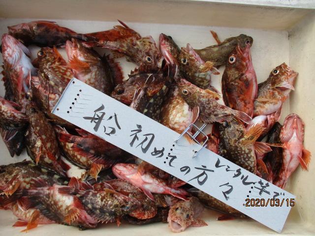 美味しい魚!